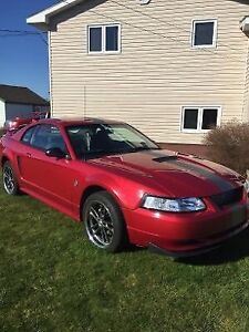 1999 Ford Mustang GT - Excellent Condition