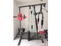 Pro Power Multi Gym for sale