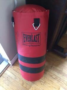 Everlast 40 lb punching bag - including gloves and skipping rope