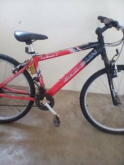Shogun mountain bike
