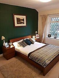 IKEA MALM Double bed and mattress . Like New. ash veneer.