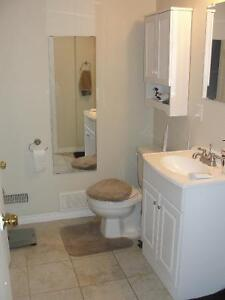 1 Bedroom Walkout Apartment Hespler, Huge and Mature Yard Cambridge Kitchener Area image 6