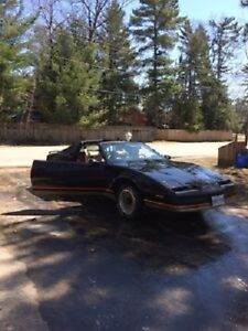 1987 Firebird All Original No Rust Anywhere