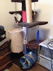 Mobilier jeu pour chat