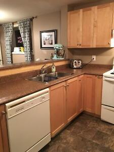 Two Bedroom Above Ground Basement Apartment in Paradise