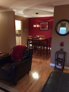 Looking for a roomie for my awesome condo near Quidi Vidi! St. John's Newfoundland image 7