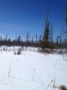 30 acres of recreational land West Island Greater Montréal image 3