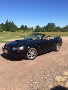 2004 Ford Mustang Convertible V-6