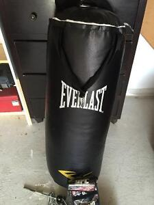 Everlast Punching Bag with UFC Gloves