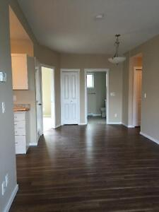 New Downtown Condo for rent.