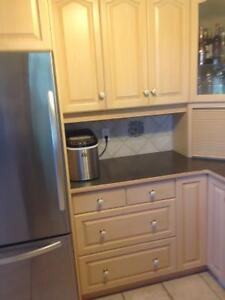 Kitchen cabinets & counter top & sink