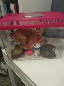 Hermit crab cage with everything you need!