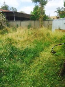 Cheap Lawn Mowing &Gardening& landscaping (gutter cleaning) Blacktown Blacktown Area Preview