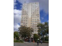 One bedroomed flat in a high rise block at Hampton View suitable for a single person or a couple