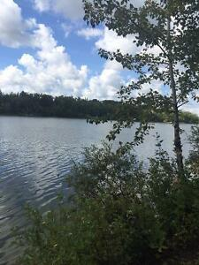Waterfront fully serviced treed RV lot at Halfmoon Lake Resort