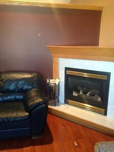 Napoleon gas fireplace