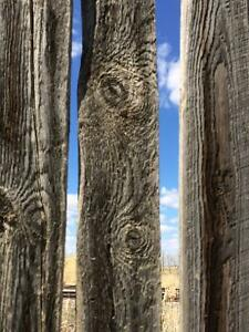 Barn wood for sale!