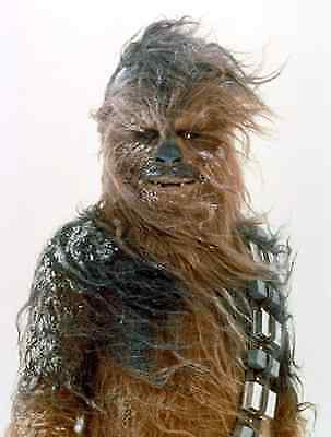 Peter Mayhew als Chewbacca