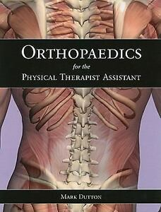 Physical Therapist Assistant top tens reviews