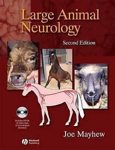 Large Animal Neurology by Mayhew, Joe