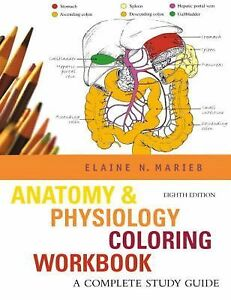 elaine marieb anatomy and physiology pdf