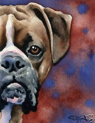 BOXER Dog Watercolor 8 x 10 Art Print by Artist DJR
