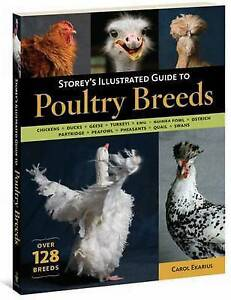 Storey-039-s-Illustrated-Guide-to-Poultry-Breeds-by-Carol-Ekarius-Paperback-2007