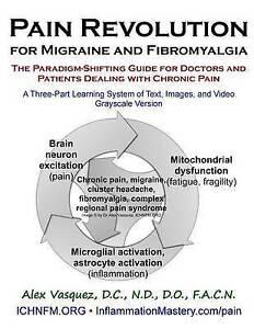 Pain Revolution for Migraine Fibromyalgia (Discounted Printin by Vasquez Alex