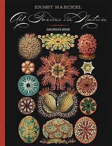 CBA Haeckel/Art in Nature by Haeckel, Ernst -Hcover