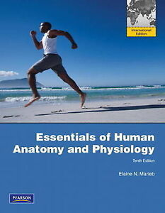 Essentials of Human Anatomy and Physiolo...
