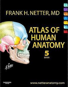 BRAND-NEW-Atlas-of-human-anatomy-by-netter-5TH-EDITION-5-ED