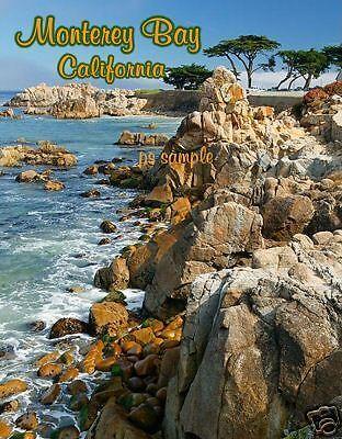California   Monterey Bay   Travel Souvenir Flexible Fridge Magnet