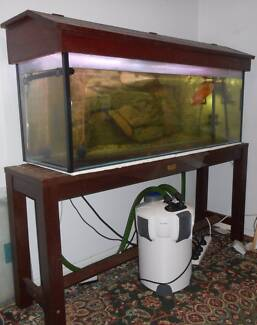 4FT fish tank and timber stand with hutch light filter