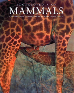 Encyclopedia-of-Mammals-Natural-World-Used-Good-Book