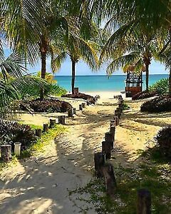 The Best All Inclusive Vacation Moon Palace Jamaica & Cancun