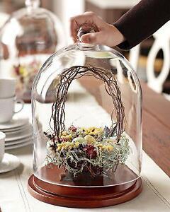 """DIY/Wedding centerpiece/wholesale/glass  Cloche Bell Beauty 12"""""""