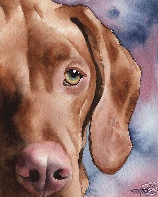 HUNGARIAN VIZSLA Painting Dog 8 x 10 ART Print Signed DJR