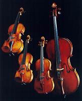 String Quartet- musicians available for special events