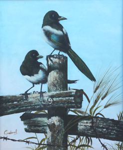 'BIRDS ON A FENCE'  by  C. JEFFARES Morayfield Caboolture Area Preview