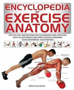The anatomy of exercise