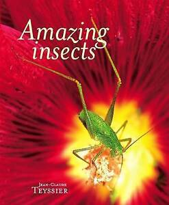 Amazing Insects by Jean-Claude Teyssier (Hardback, 2009)