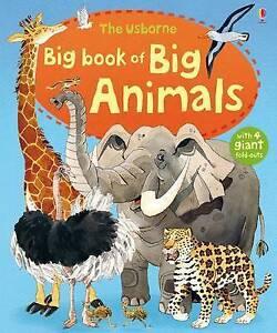 Big Book of Big Animals (Usborne Big Books), Hazel Maskell | Hardcover Book | Go