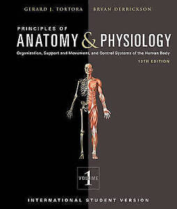 Principles of Anatomy and Physiology by Gerard J Tortora Bryan H Derrickson - keswick, United Kingdom - Principles of Anatomy and Physiology by Gerard J Tortora Bryan H Derrickson - keswick, United Kingdom