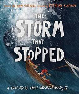 The Storm That Stopped by Alison Mitchell (Hardback, 2015)