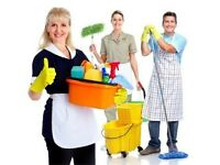 Domestic Cleaners End of Tenancy Cleaning Carpets Cleaning Man and van services