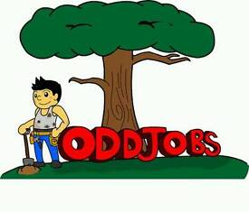 Odd jobs / gardening/painting/cleaning