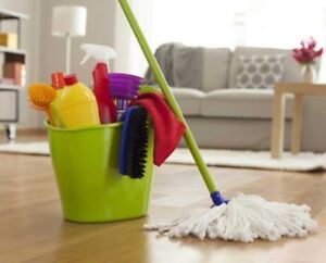 House cleaning professional available in Sussex and Area