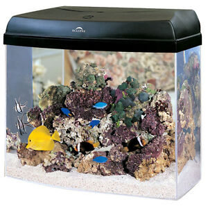The marineland eclipse 12 aquarium system acrylic 12 for Eclipse fish tank