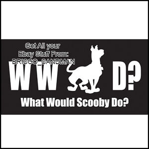 Fridge Fun Refrigerator Magnet SCOOBY DOO - WWSD? Version C