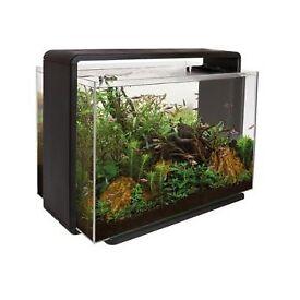 Super Fish home 80L aquarium With Filter Fish Tank